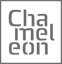 Smit Visual Chameleon